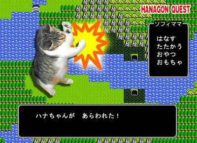 hanagon2